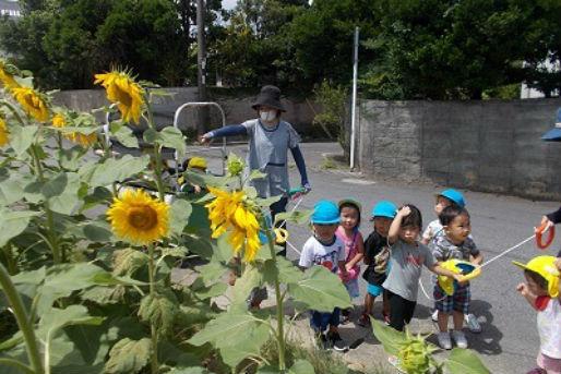 もりのなかま保育園美原園(沖縄県沖縄市)