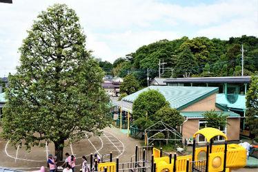 貫井保育園(東京都小金井市)