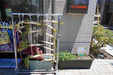 さつき保育園中村橋園(東京都練馬区)